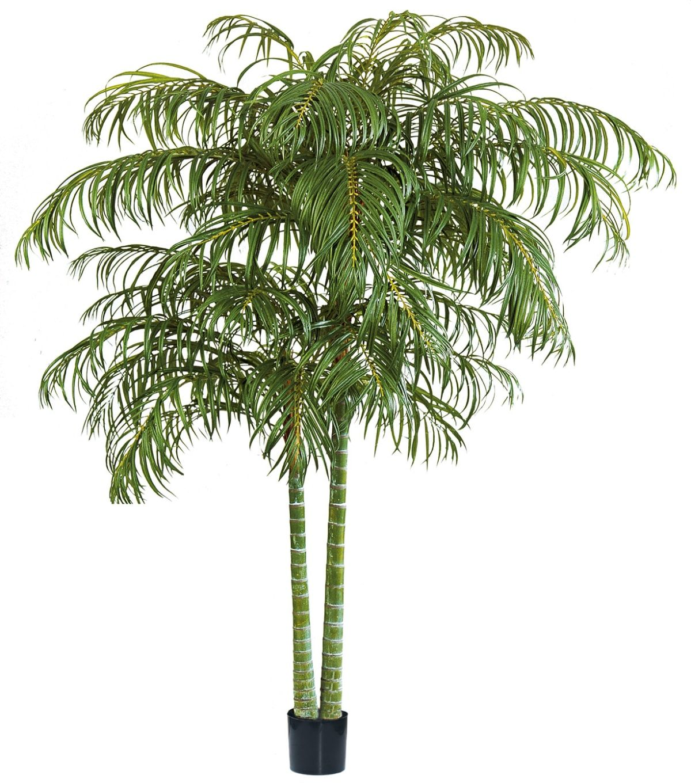 Alquiler de plantas artificiales