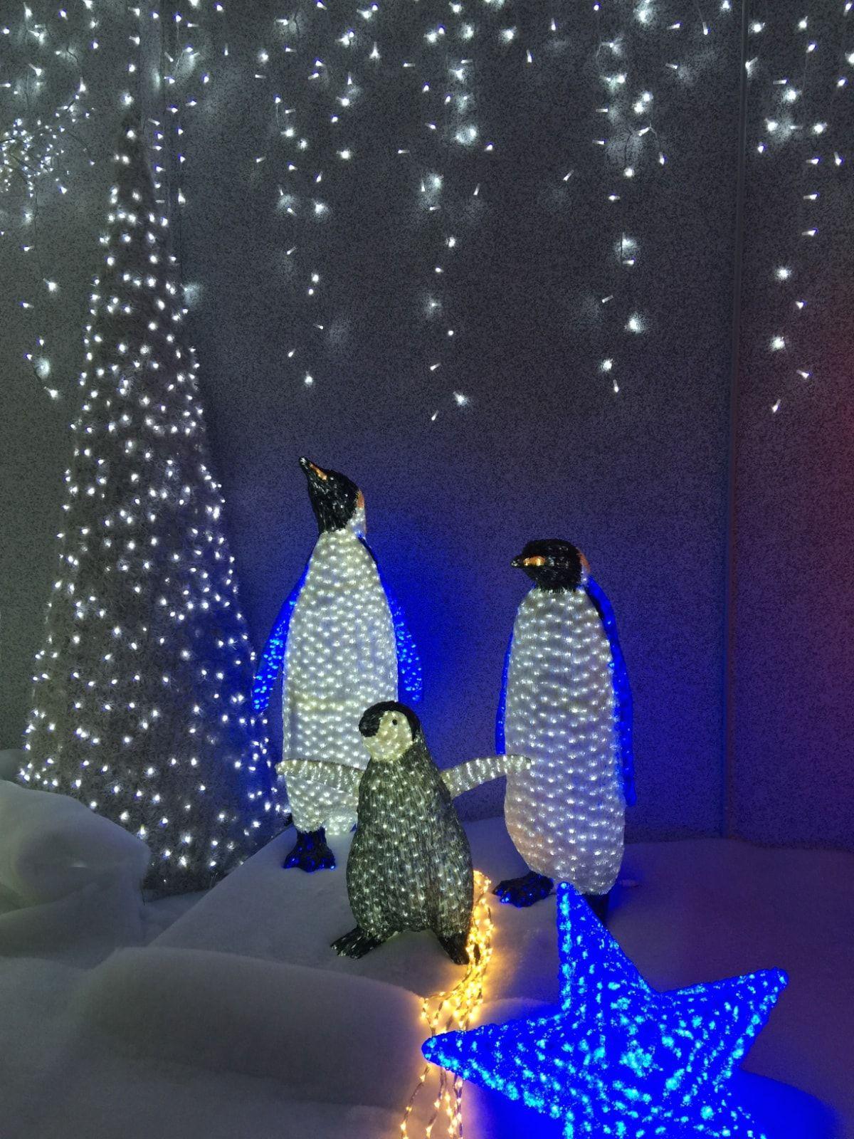 Decoración Navidad